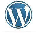 WordPress 3.0: Review