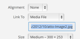 WordPress Attachment Image Settings