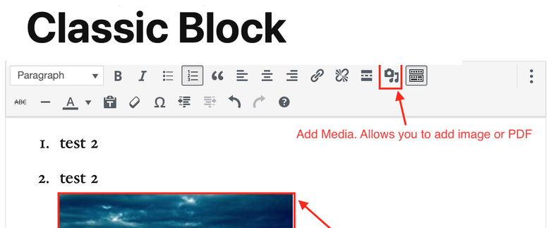Use the Classic Editor with Gutenberg Block Editor